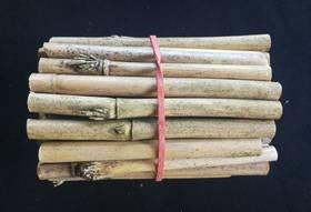 Bambusröhrchen für Wildbienenvilla