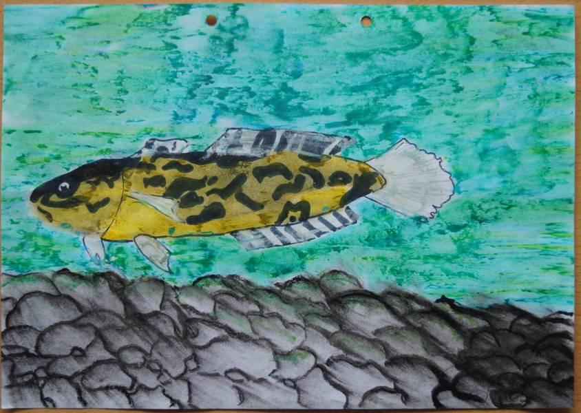 Liliane K. zeichnung Fisch