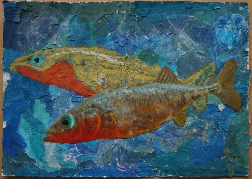Alois H. Zeichnung Fische