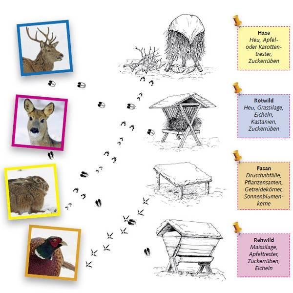 Tierspuren