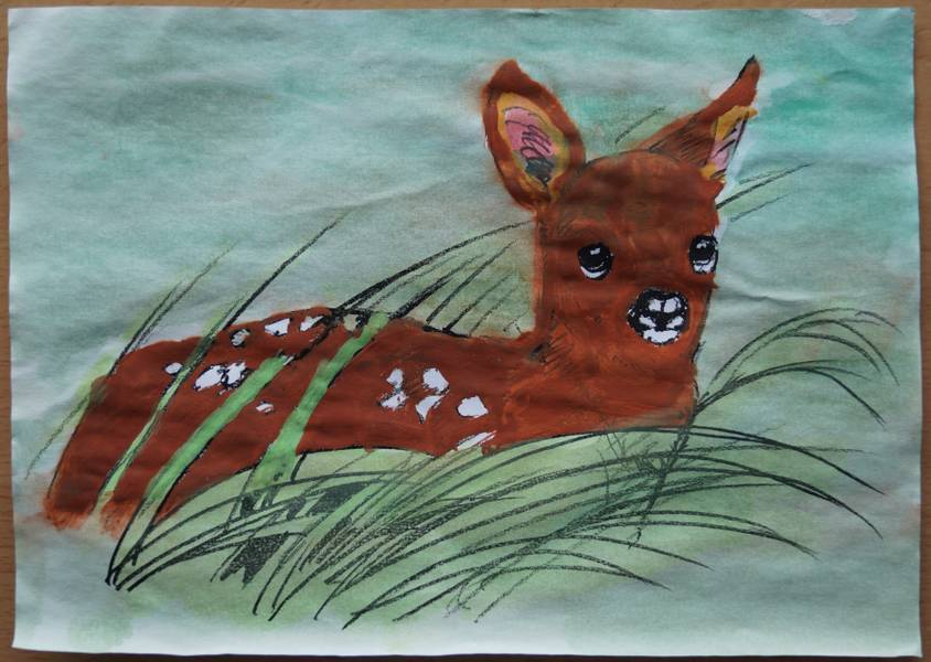 Franziska F. zeichnung Bambi