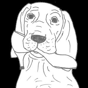 Zeichnung Hund mit Schuh im Mund