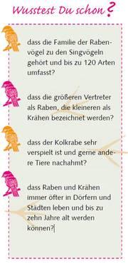 Informationen ueber Raben